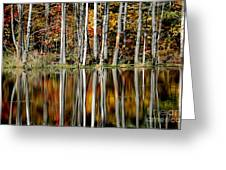 Fall In New York Greeting Card