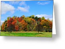 Fall In North Carolina Greeting Card
