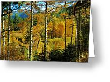 Fall In The Sierras Greeting Card by Helen Carson