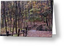 Fall In Yellowsprings Greeting Card