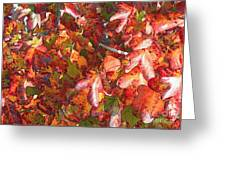 Fall Leaves - Digital Art Greeting Card