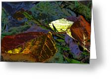 Fall Leaves Abstraction Greeting Card