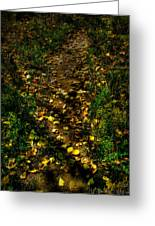 Fall Lined Trail Greeting Card