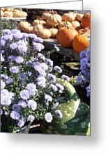 Fall Medley Greeting Card