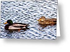 Fall Millards Swiming Greeting Card