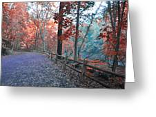 Fall On Forbidden Drive Greeting Card
