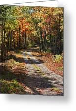 Fall On The Wyrick Trail Greeting Card