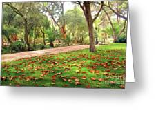 Fall Park Greeting Card