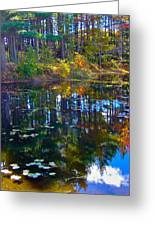Fall Reflection 2 Greeting Card