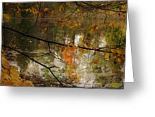 Fall River Branches Greeting Card