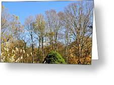 fall scapes in CT Greeting Card