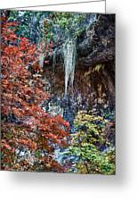 Fall Scene At Lost Maples Greeting Card