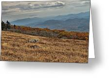 Fall Scene On Whitetop Mountain Va Greeting Card