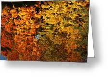 Fall Textures In Water Greeting Card by LeeAnn McLaneGoetz McLaneGoetzStudioLLCcom