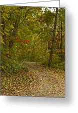 Fall Trail Scene 22 Greeting Card