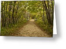 Fall Trail Scene 23 Greeting Card