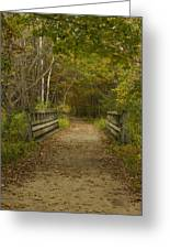 Fall Trail Scene 24 Greeting Card