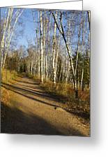 Fall Trail Scene 35 B Greeting Card