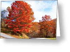 Fall Tree By The Road Greeting Card