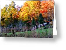 Fall Trees And Fence Greeting Card