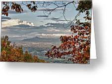 Fall View From Roanoke Mountain Greeting Card