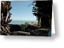 Fallen For Lake Tahoe Greeting Card