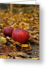 Fallen Fruit Greeting Card