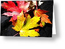 Fallen In The Fall Greeting Card