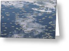 Fallen Leaves And Reflections Of Clouds Greeting Card