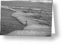 Falling For The Sea Greeting Card