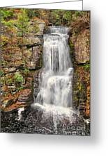 Falls At Bushkill Greeting Card