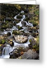 Falls Creek Greeting Card
