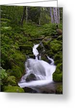Falls Creek IIi Greeting Card
