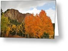 Fall's Glory Greeting Card