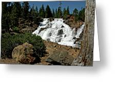 Falls In Site Glen Alpine Falls Greeting Card