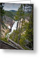 Falls In The Grand Canyon Of Yellowstone Greeting Card