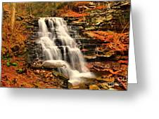 Falls In The Woods Greeting Card