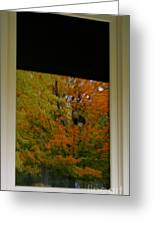 Fall's Reflective Moment Greeting Card