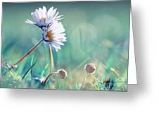 Family Of Daisy  Greeting Card