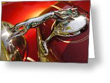 Fancy Ford Chrome Hood Ornament Greeting Card