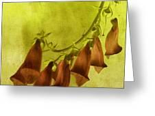 Fancy Foxglove Greeting Card by Bonnie Bruno