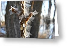 Fancy Fractal Frost Crystals Greeting Card