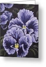 Fancy Pansies Greeting Card