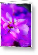 Fantasy In Fuchsia Greeting Card