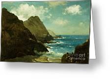 Farallon Islands Greeting Card