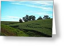 Farm Fields Greeting Card