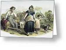 Farm Scene, C1870 Greeting Card