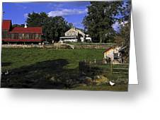 Farm Scene Greeting Card