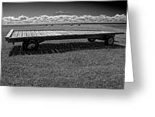 Farm Wagon In A Field On Prince Edward Island Greeting Card