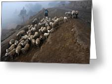 farmers bring their sheep to graze. Republic of Bolivia. Greeting Card